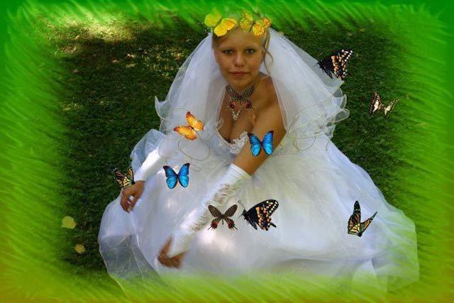 Liked Videobabylon Russian Bride Wedding 99