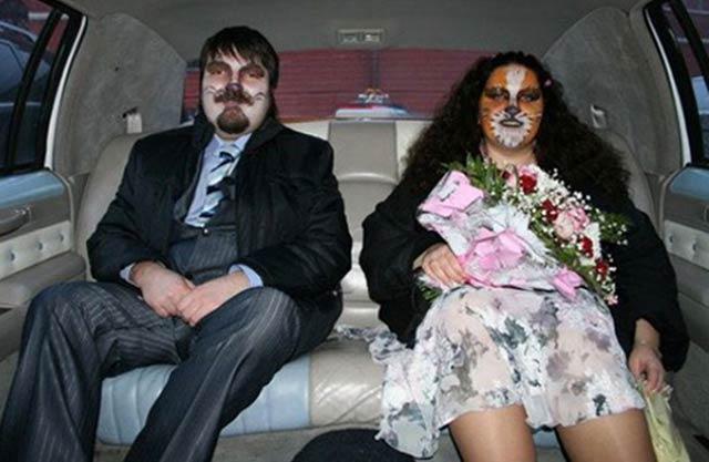 Bride Groom As Cats 15 Funny Wedding Pics