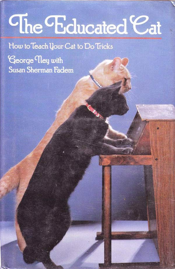 educated cat - photo #31